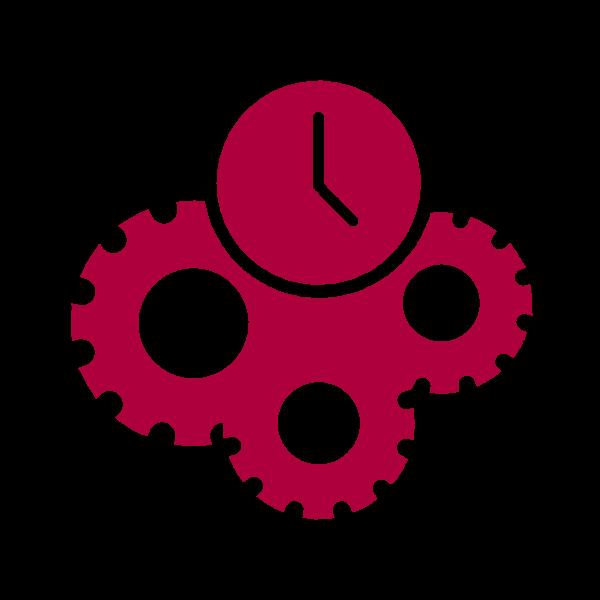 LeschConsult-Icon-Ausfuehrung